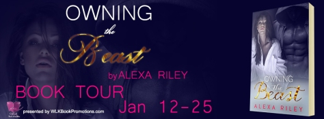 Owning the Beast - Tour Banner