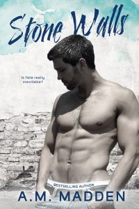 Stone Walls ebook cover