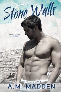 Stone Walls ebook cover