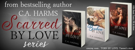 scarred by love series banner