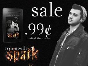 spark sale (1)