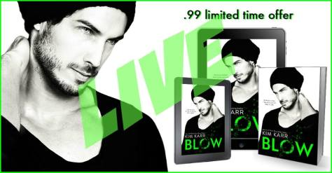 blow book 2 (1)