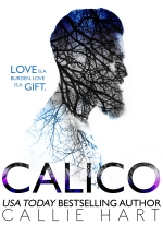 NEW CALICO COVER (1)